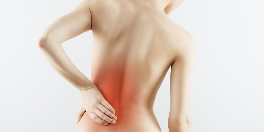 Knee And Low Back Pain